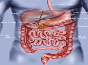 图雷特综合征是一种神经疾病,它会让人神经紊乱